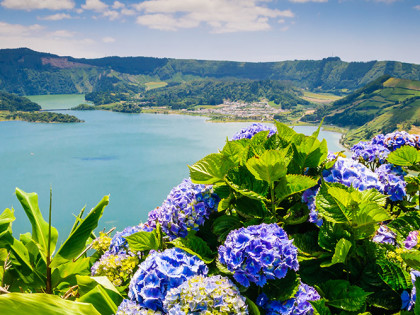 Lake-of-Sete-Cidades-with-hortensia