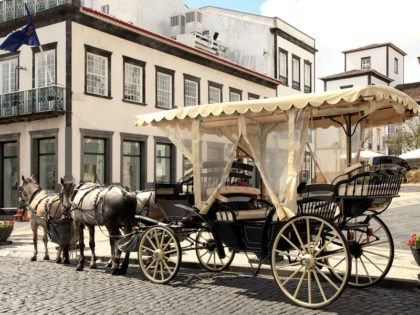 Horse Drawn Carriage, in Punta Delgada, Azores