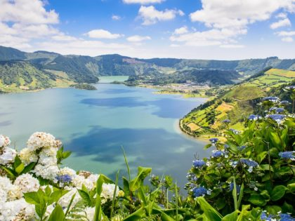 Lake of Sete Cidades with hortensia