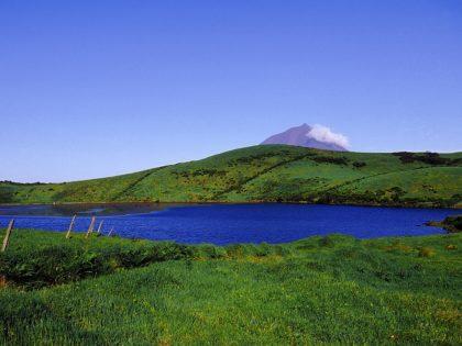 Landscape, Pico island (3)