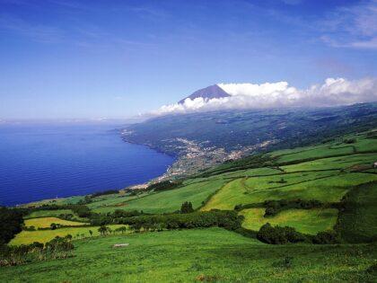 Landscape, Pico island (2)