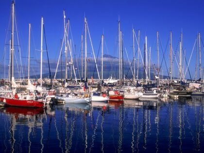 Marina of Horta in Faial island